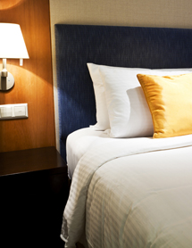 Bed Bug Infestation — A Concern for Hospitality Industry