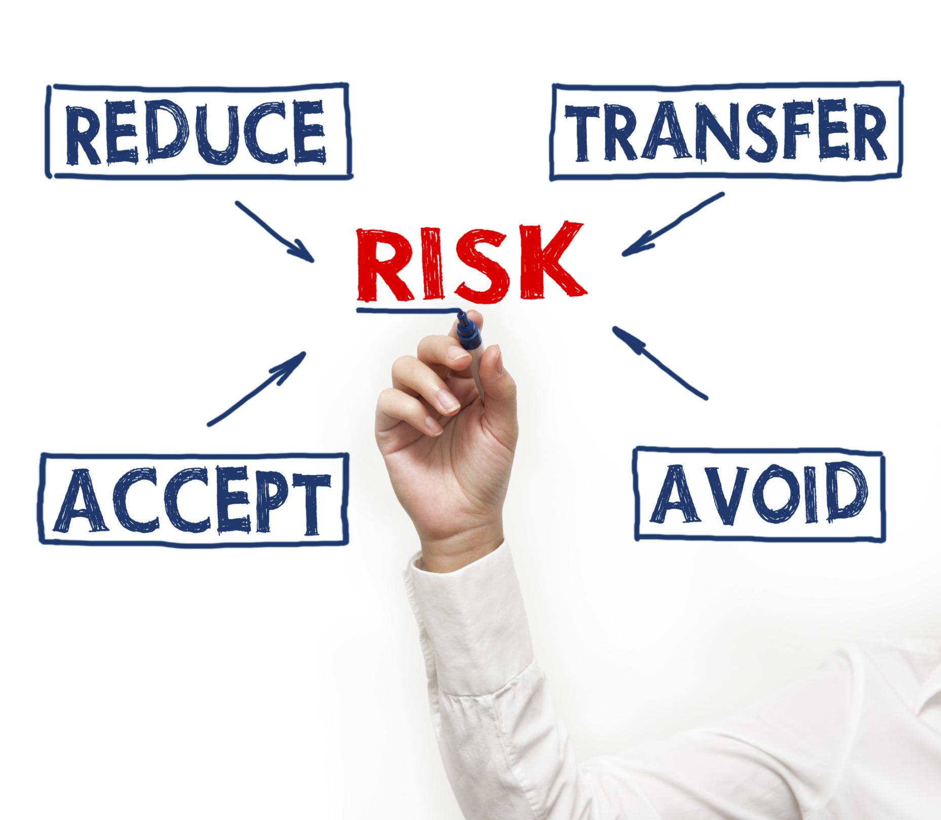 risk management audit