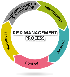 riskmanagementprocess1