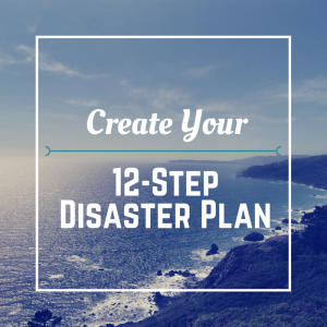 12 Step Disaster Plan