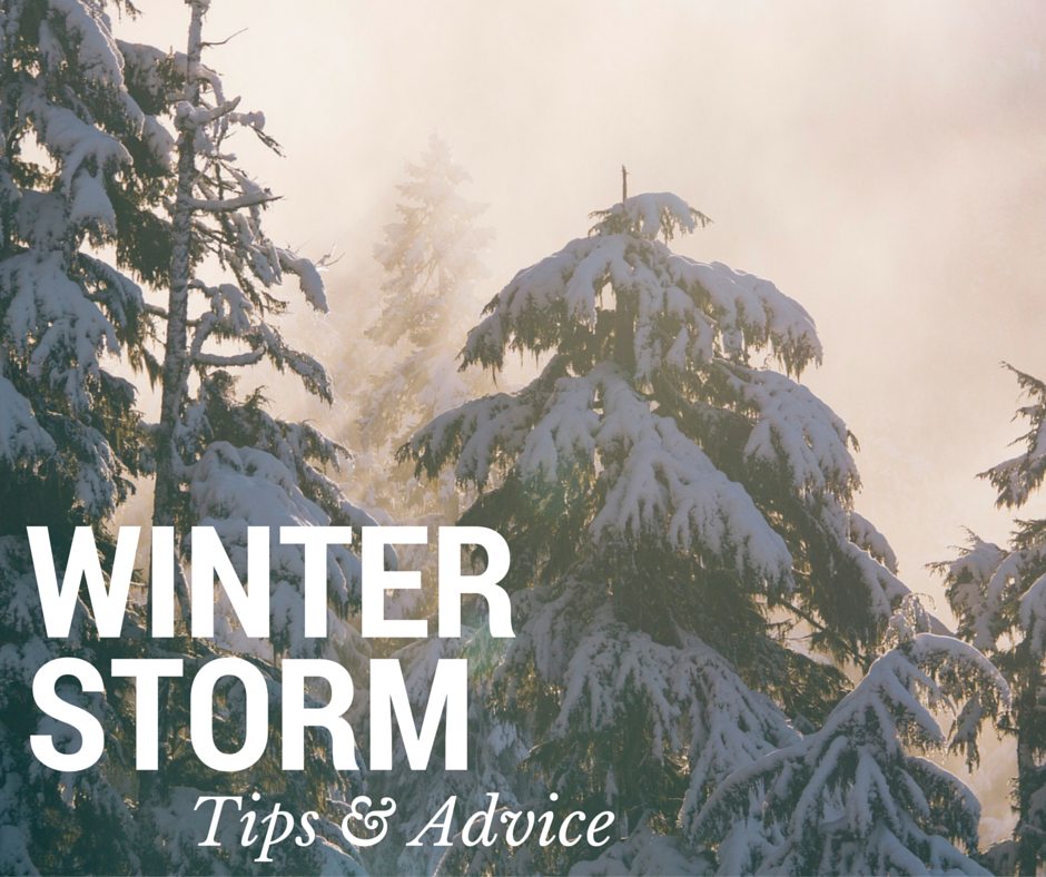 Surviving a Winter Storm: What to do Post-Disaster Thumbnail Image