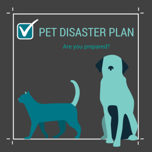 Pet-Disaster-Plan