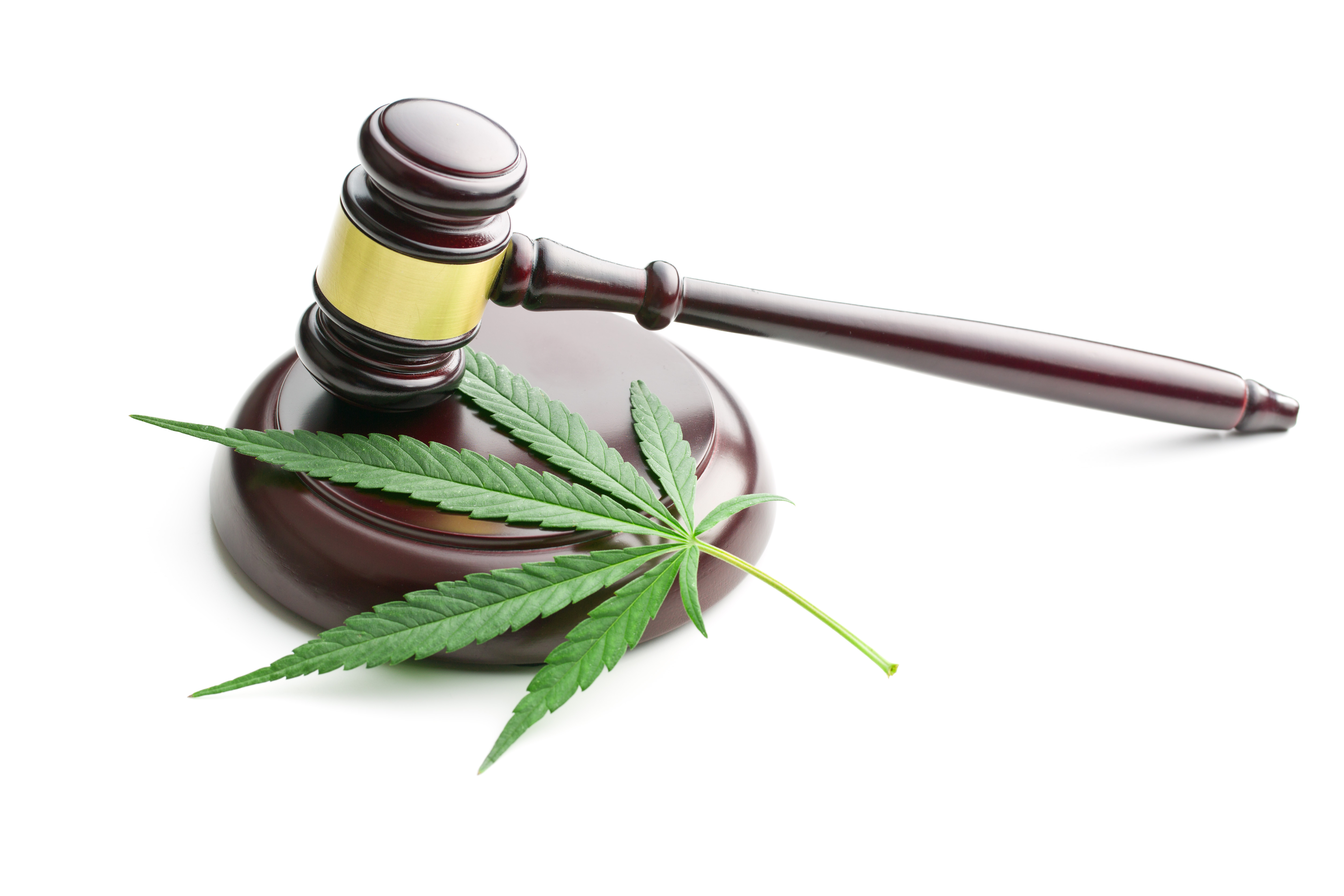 Tenants and Marijuana - What's a landlord to do? - Insights for Your Industry